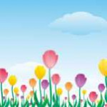 s-tulip009.jpg