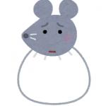 kotowaza_animal_fukurono_nezumi.png